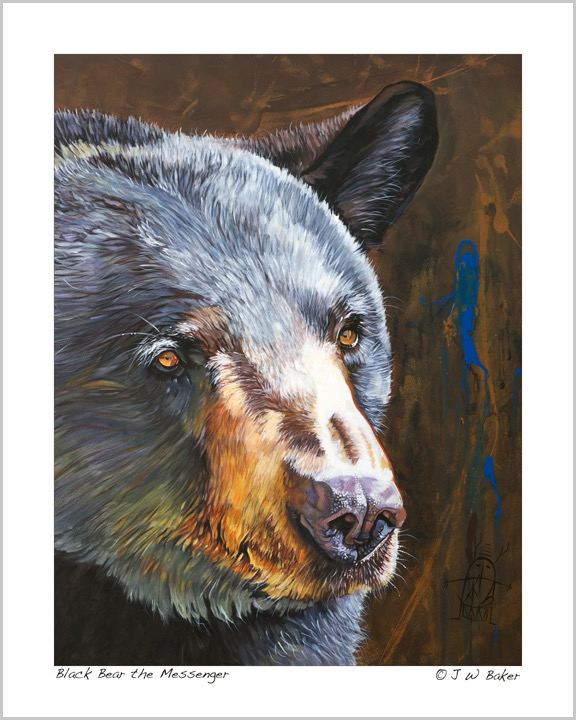 Black Bear the Messenger2